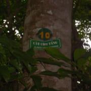 com-tang